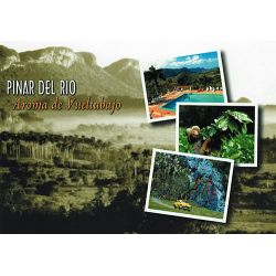 Pinar del Rio greetings card with CD