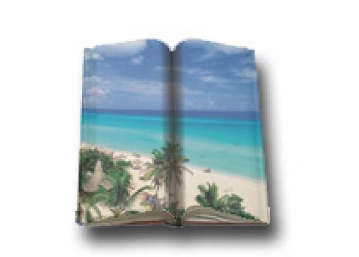 Travel & Holidays Books